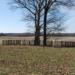 Oak Hill Cemetery 1860-1880